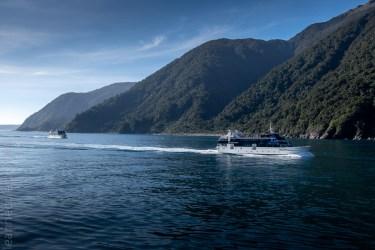 milford sound-boatcruise-fiordland-newzealand-0247
