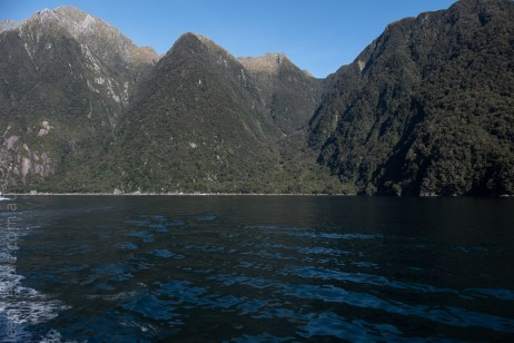 milford sound-boatcruise-fiordland-newzealand-0249
