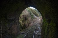 train-taieri-gorge-dunedin-newzealand-1576