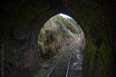 train-taieri-gorge-dunedin-newzealand-1576