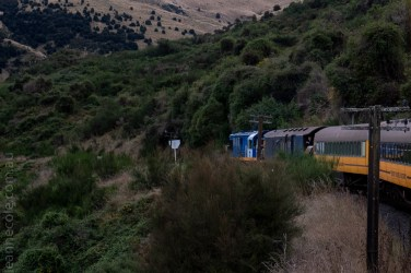 train-taieri-gorge-dunedin-newzealand-1716