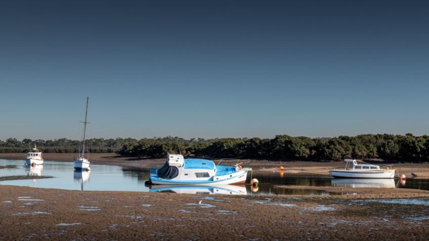 Warneet tidal river, low tide