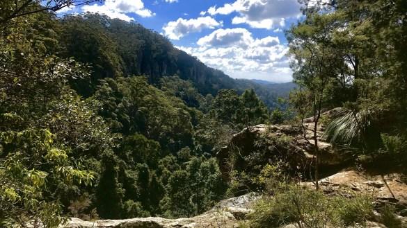 Twin Falls – Springbrook National Park
