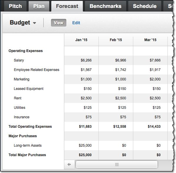 Total Spending Budget LivePlan Example