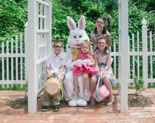 Bunny_Children_Web