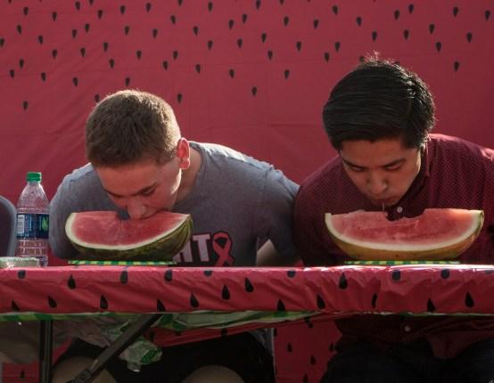 J4_Watermelon_6_Web