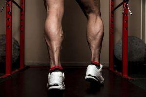 Single-leg rotary calf press