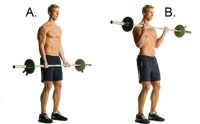 barbell-curl