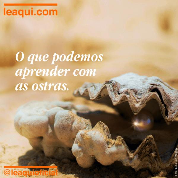 """Ostra semiaberta sobre areia, com o brilho de uma bela pérola e a inscrição """"O que podemos aprender com as ostras"""""""