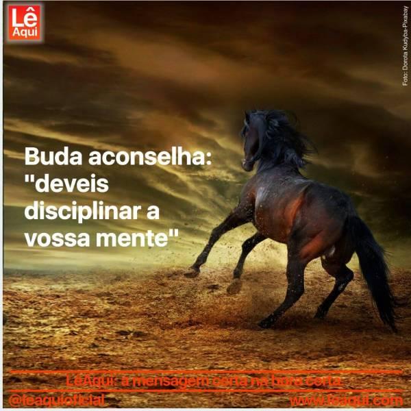 """Cavalo selvagem galopando e o céu sombrio com a inscrição Buda aconselha: """"deveis disciplinar a vossa mente"""""""