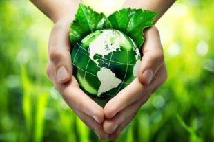 duas mãos segurando o globo terrestre todo verde demonstrando preocupação ambiental Papa Francisco futuro