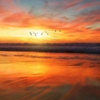 Com paz de espírito você pode manifestar seus desejos