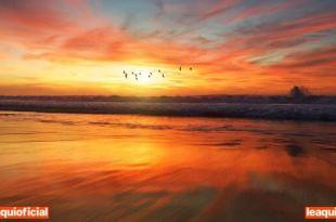 imagem do nascer do dia em uma praia desertar com pássaros voando paz de espírito manifestar desejos