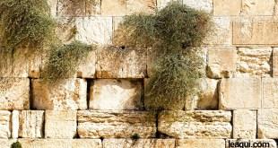 As respostas de Jesus para as dificuldades nos relacionamentos