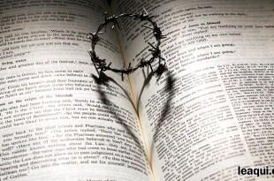 prestação de contas plano espiritual