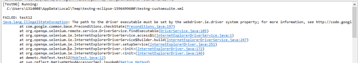 run selenium webdriver test in IE browser