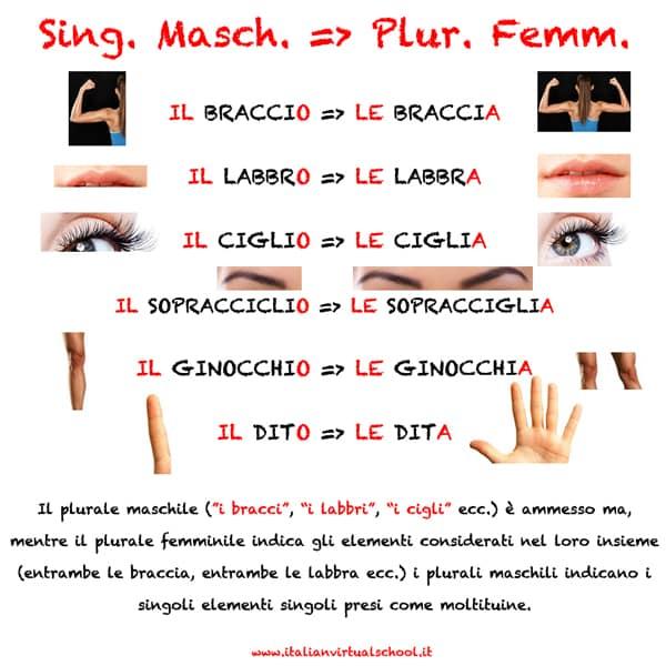 Plurali irregolari in Italiano