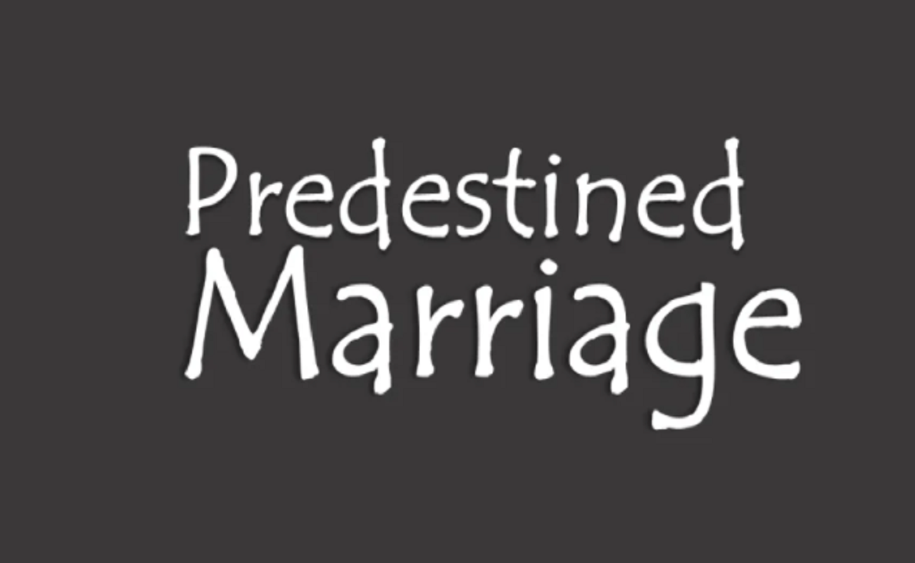 Predestined Marriage Novel