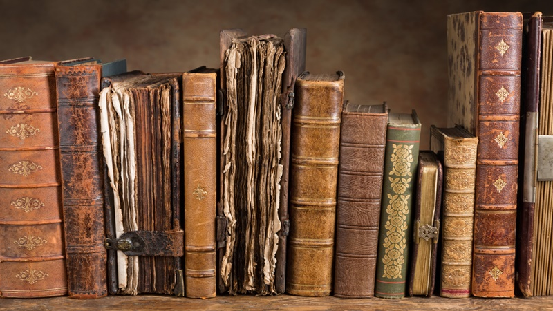 Old leather books on a book case