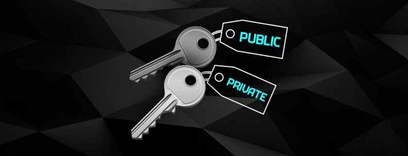 keys with black background public and private