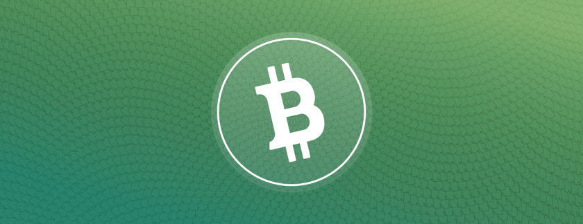 BCH Logo in front of green background