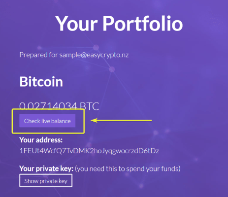 check live balance feature from main website