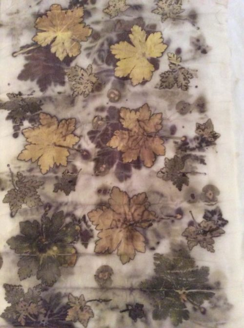 Debbie Lucas: Geranium and herb Robert leaves on cotton with soy binder