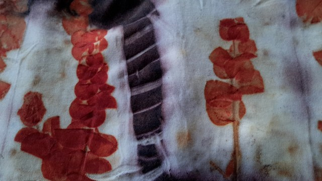 Kathy Little: Shibori dyeing and eucalyptus leaves on wool