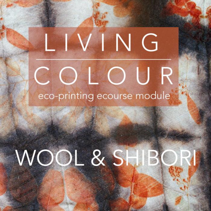 Wool and Shibori