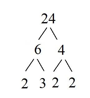factor tree of prime factors of 24