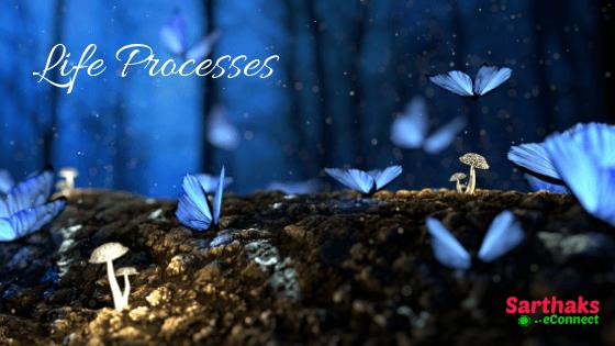 Life-processes