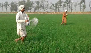 agriculture practices fertilzer and manuring