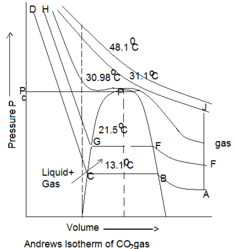 Andrew's Isotherms in States of Matter