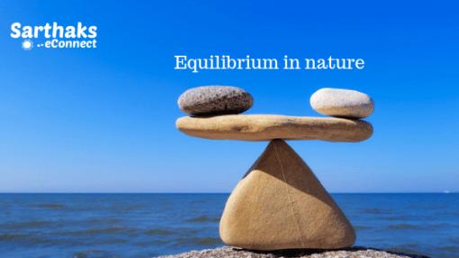 Equilibrium in nature