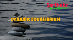 Dyanmic Equlibrium