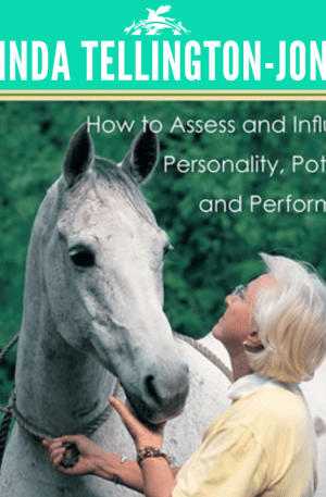 Getting in TTouch with your Horse's personality
