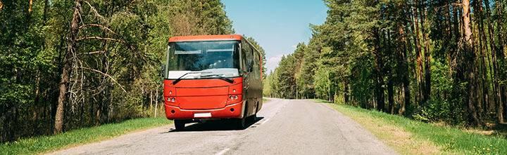 tiêu điểm xe buýt