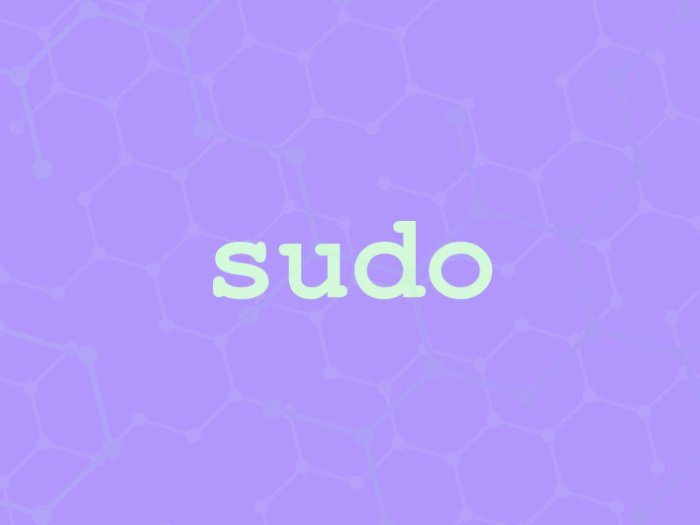 sudo command in linux