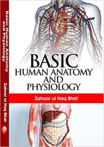 OBM751 Basics of Human Anatomy and Physiology