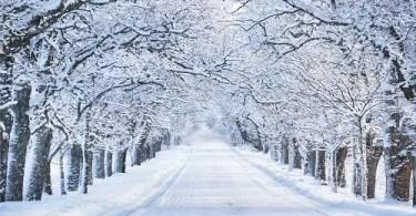 Lesson 68 - Winter