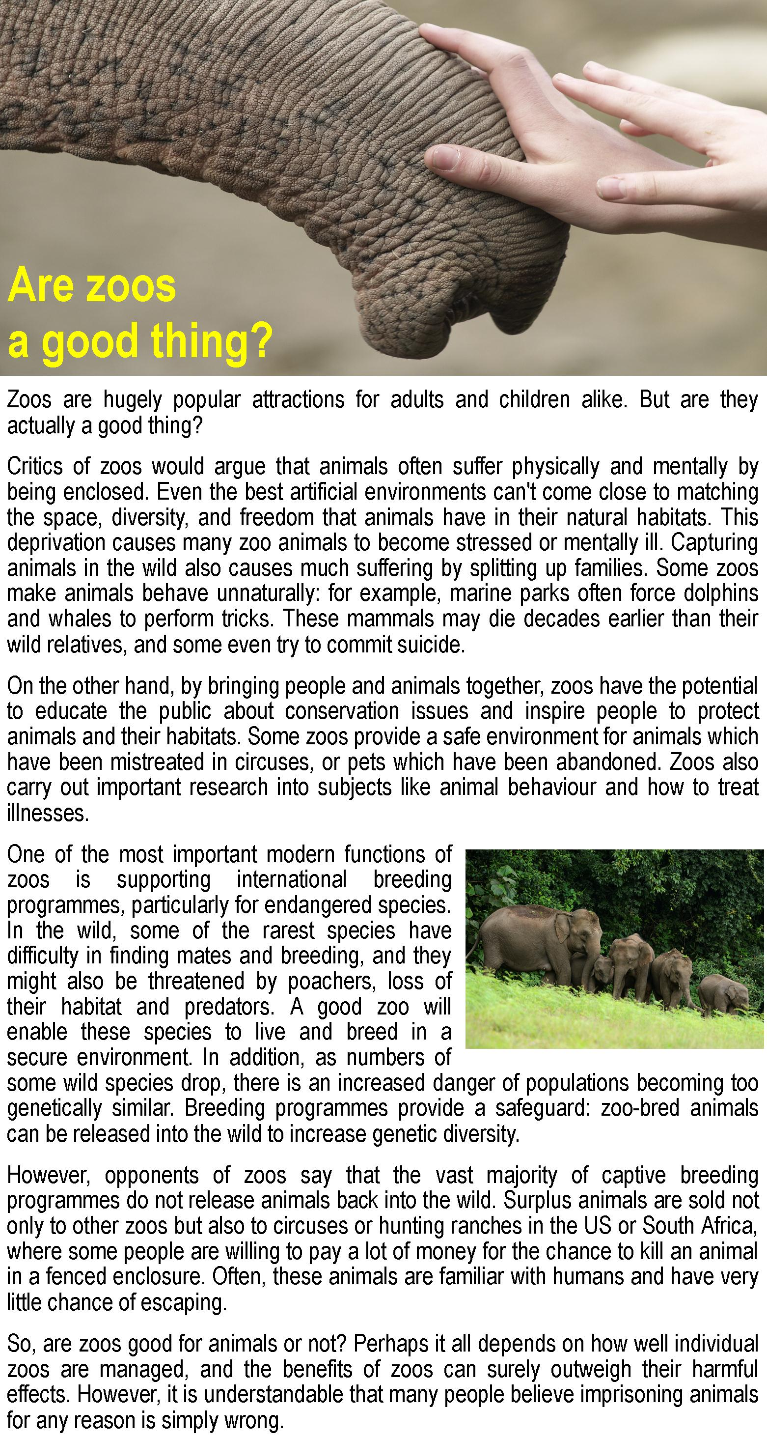 Are Zoos A Good Thing Learnenglish Teens