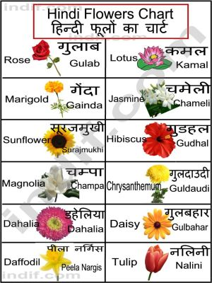 hindi letters « learnhindionline