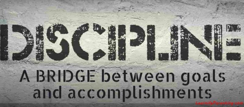Importance Of Discipline In Life Essay Synonym Learnifyparenting Control, rule, authority, direction, regulation | collins english thesaurus. learnifyparenting