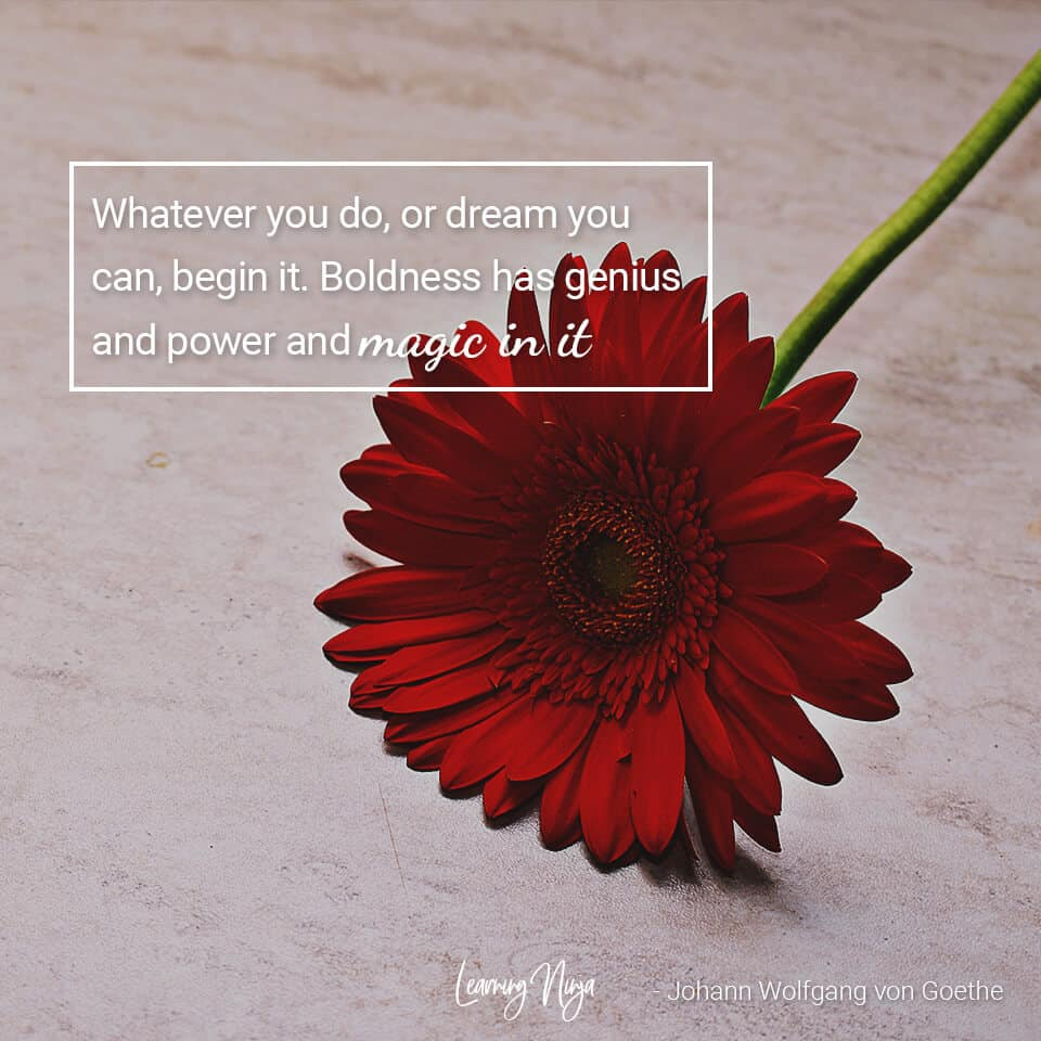 Whatever you do, or dream you can, begin it. Boldness has genius and power and magic in it - Johann Wolfgang von Goethe