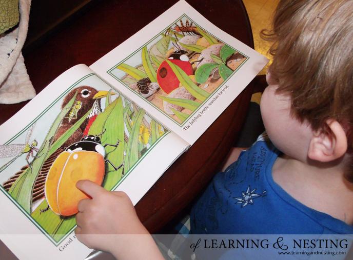 ladybug-book