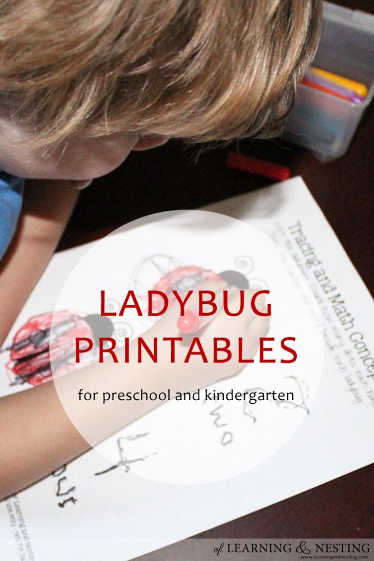 FREE Ladybug Printables for Preschool and Kindergarten! Great for homeschool.