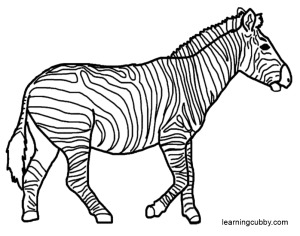coloring pages of zebras free coloring pages of zebras zebra