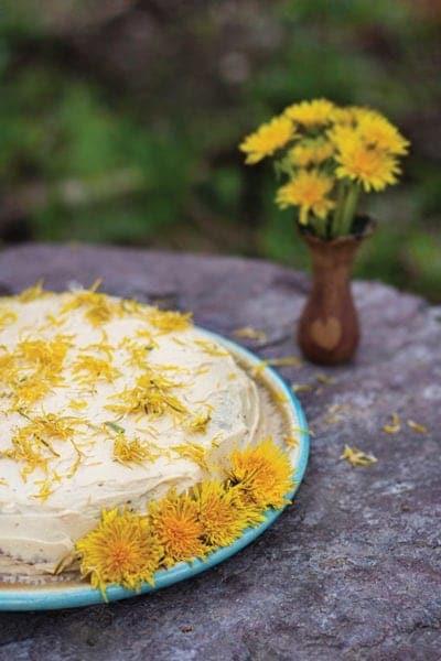 Dandelion Maple Syrup Cake