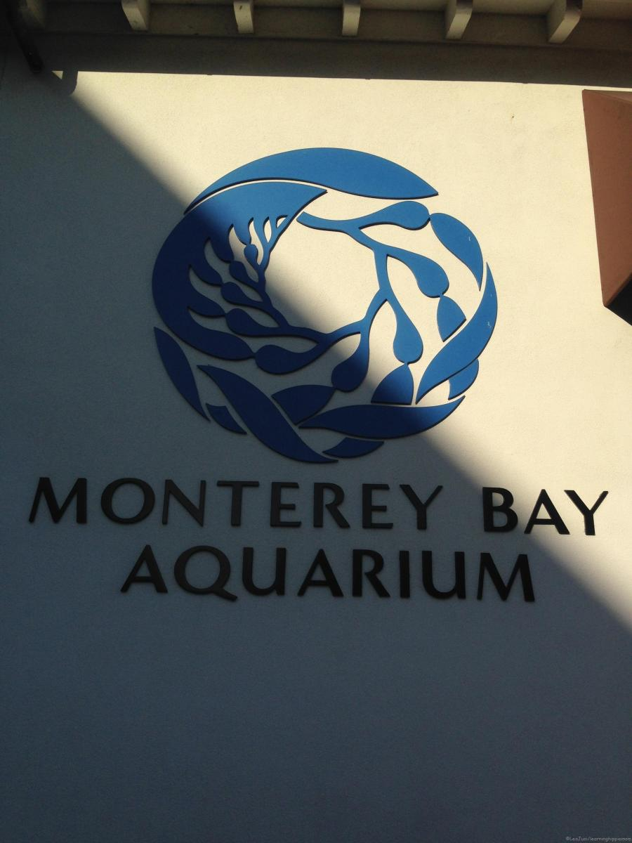 Happy 30th Anniversary, Monterey Bay Aquarium!