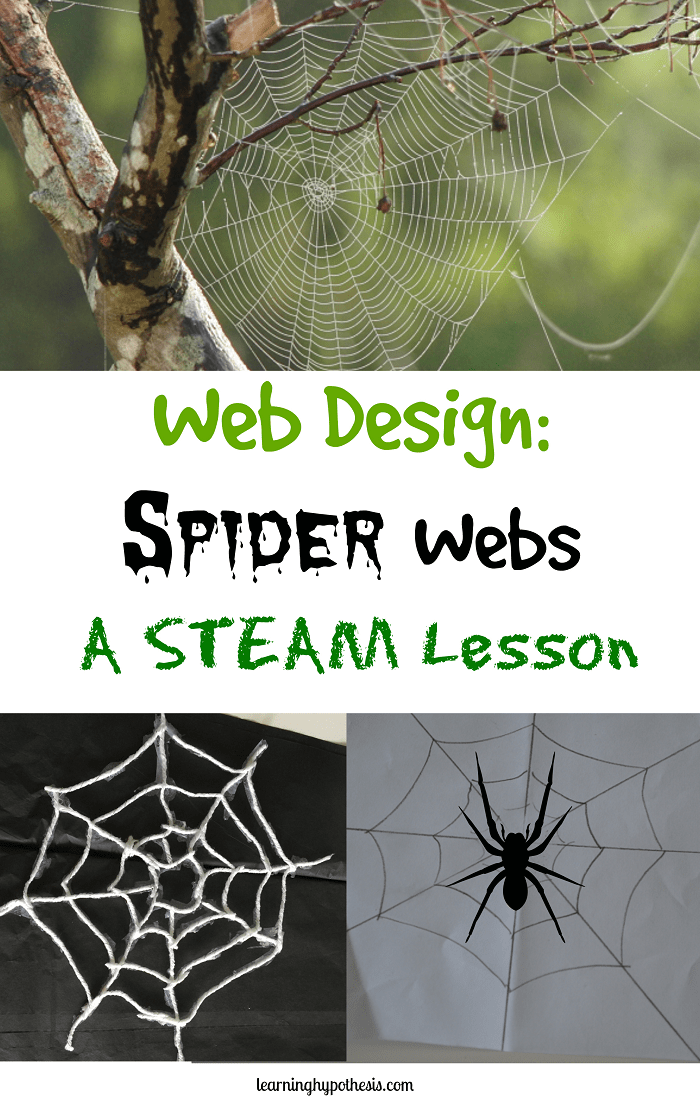 Web Design: Spider Webs